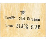 Archival Dialogues: Reading the Black Star Collection at the Ryerson Image Centre