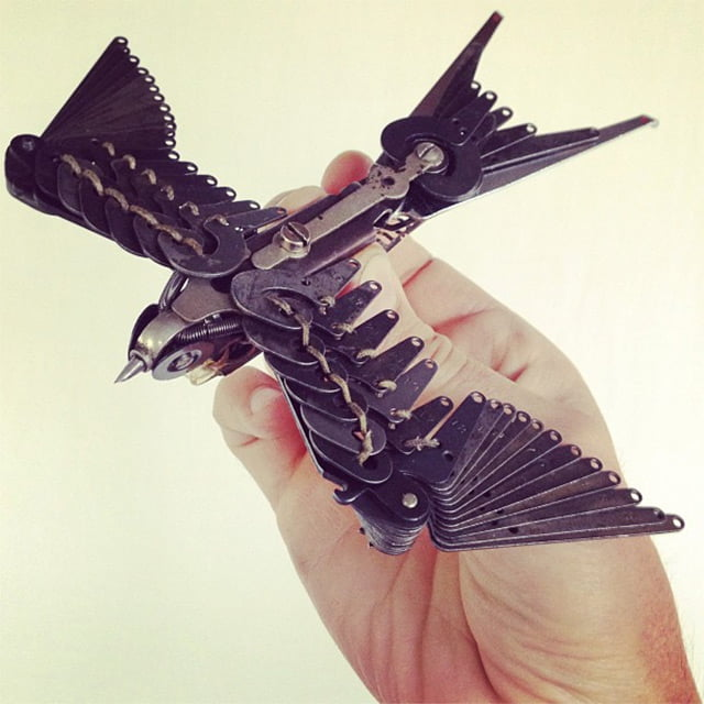 swallows-4