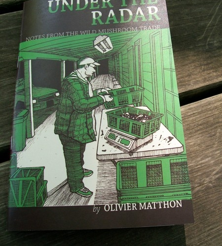 Under the Radar: An Interview with Olivier Matthon