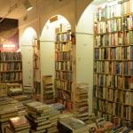Community Strangeness: On Fredericton's Owl's Nest Bookstore